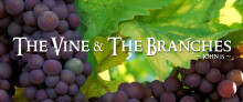 The Branches