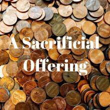 A Sacrificial Offering