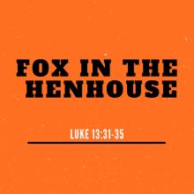 Fox In The Henhouse